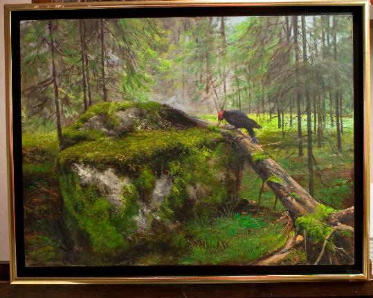 Metsä,palokärki,sammal,forest,woodpecker,moss,stone,kivi