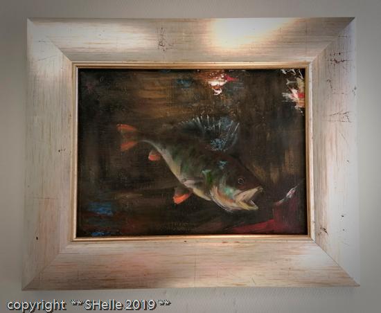 Ahven,kala,fish,perch
