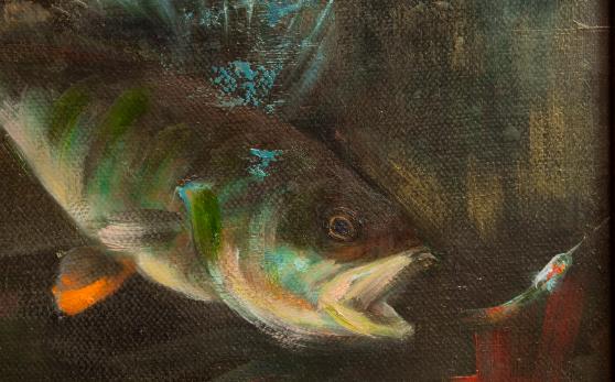 Ahven,fish,perch,kala,kalastus,fishing
