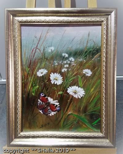Neitoperhonen,niitty,peacock butterfly,meadow