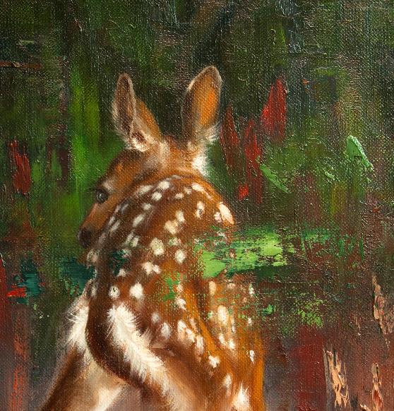 Vasa,valkohäntäpeura,joist,white-tailed deer