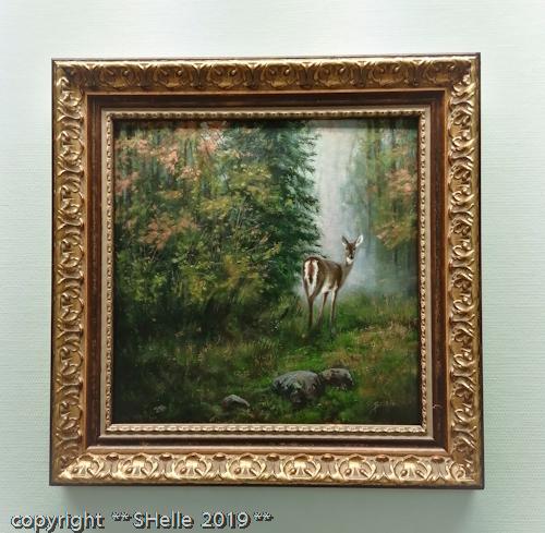 valkohäntäpeura,joist,white-tailed deer,metsä,syksy,forest,autum