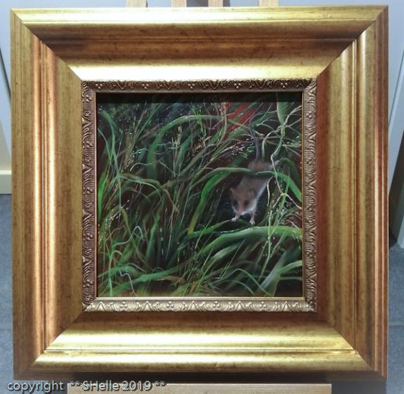 vaivaishiiri,pelto,korsi,Eurasian harvest mouse, field, stalk