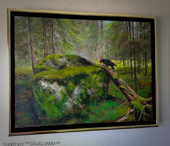 Metsä,palokärki,sammal,forest,woodpecker,moss