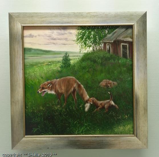 Kettu,niitty,pennut,fox,meadow,puppies