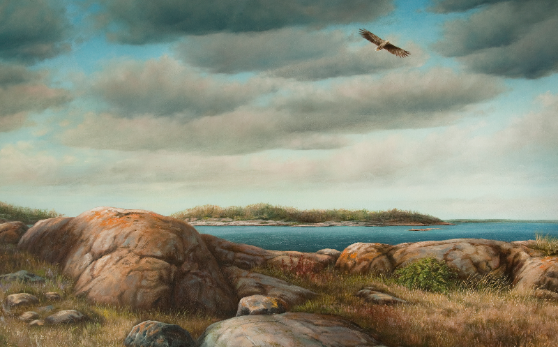 syksy,merimaisema,syystaivas,kalliot,saaristo,kotka,autumn, seascape, autumn sky, rocks, islands, eagle
